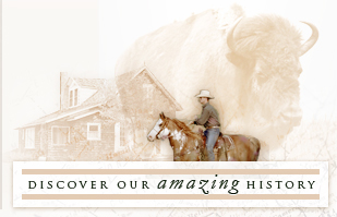 Discover our Amazing History